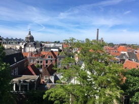 A view of Leiden from the top of a fortress thing